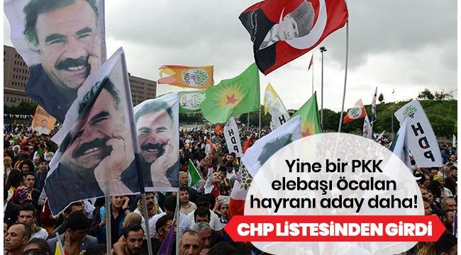 CHP'de Karaağaç'tan sonra Öcalan sempatizanı bir aday daha..