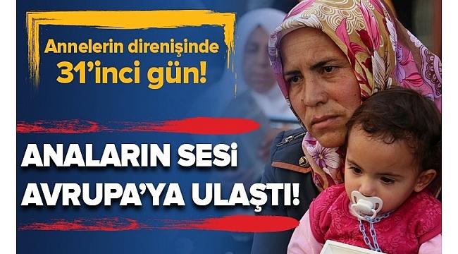 Annelerin direnişinde 31'inci gün! Anaların sesi Avrupa'ya ulaştı!......