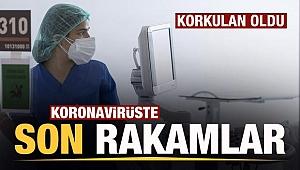 Son dakika: Sağlık Bakanlığı günlük koronavirüs tablosunu paylaştı | 23 Temmuz Cuma vaka tablosu